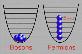 Boson and Fermion Occupation Levels