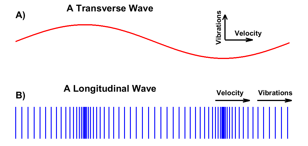 Transverse Waves vs. Longitudinal Waves